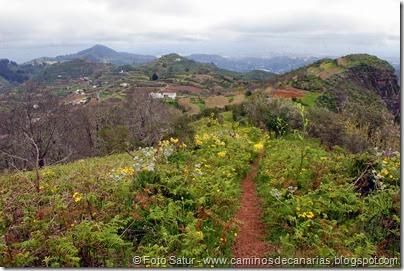 7795 Cruz Tejeda-Teror(Montaña de Valero)