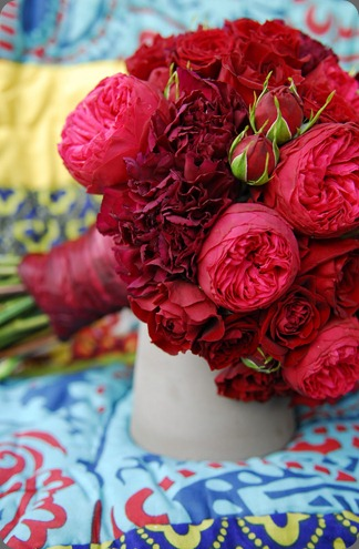 carnations and garden roses the daily petal