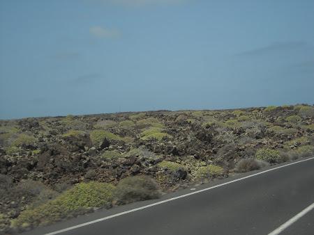 Peisaj din partea de nord a insulei Lanzarote