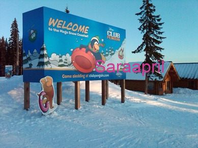 Club Penguin Billboard :)