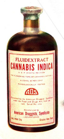 Drug_bottle_containing_cannbis