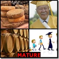 MATURE- 4 Pics 1 Word Answers 3 Letters