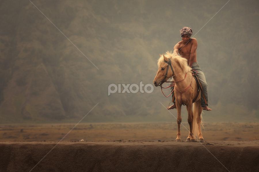 my ride by Muhammad Berkati - People Professional People ( animals, indonesia, horse, nikon, bromo, man )