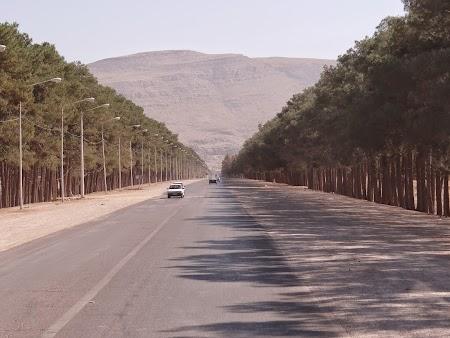 01. Drumul spre Persepolis.JPG