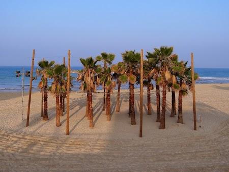 Plaja Tel Aviv