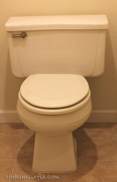 High water usage toilet