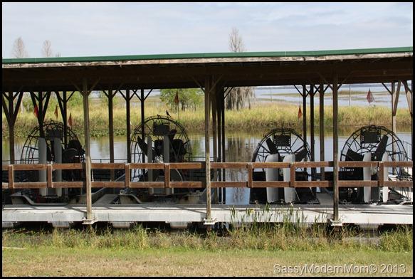 Chasing Gators!! Boggy Creek AirBoat Rides