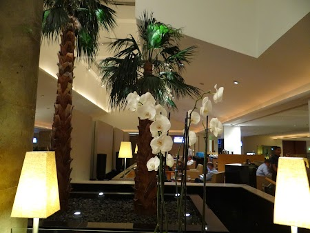09. Business lounge Doha.JPG