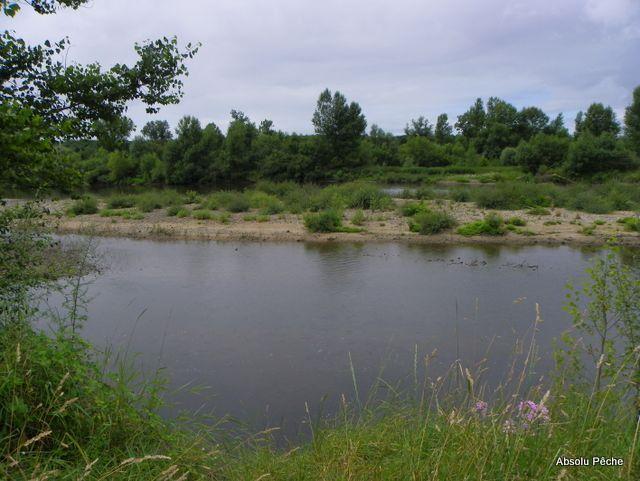 Loire au niveau d'Épercieux-Saint-Paul, amont, rive droite photo #1008
