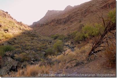 6749 Carrizal Tejeda-La Aldea(Barranco Garabateras)