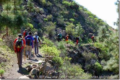 7404 Tauro-Cortadores(Camino Cortadores)