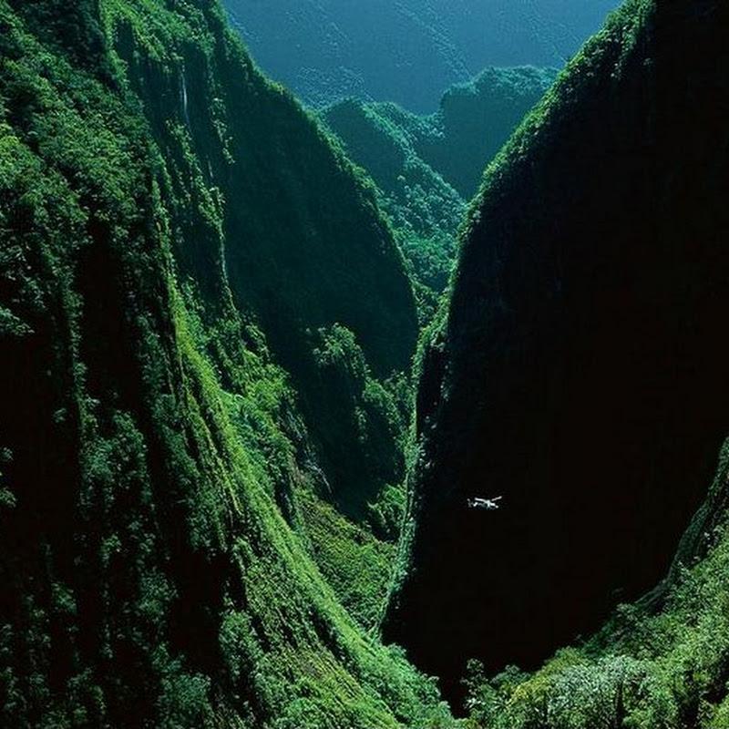 Trou De Fer Gorge In The Island Of Reunion
