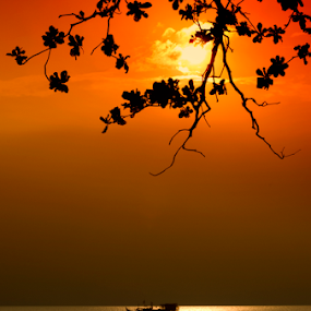 Let's Play by Ridwan Ilyas - Landscapes Sunsets & Sunrises ( silhouette )