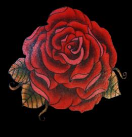 Rose-of-Jericho