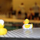 Zwemmarathon 2012