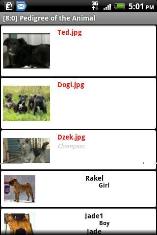 Pedigree of the Animal- screenshot