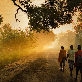 A New Day by KP Singh - Landscapes Sunsets & Sunrises ( street, sunrise, day, ludhiana, city )