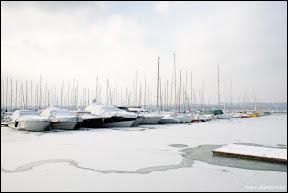 Lac Léman Genève - Glace-14.jpg