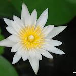Тайланд 17.05.2012 7-54-07.JPG