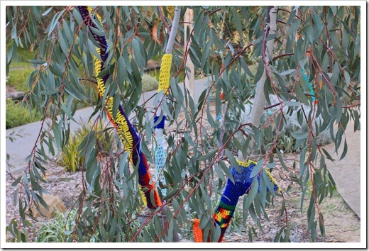 130119_UCDA_AustralianCollection_Natural-Transformations-yarn-bombing_35