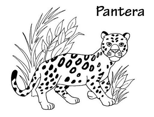 Dibujo De Pantera Pantera Colorear Dibujos Top Como: Dibujos Panteras