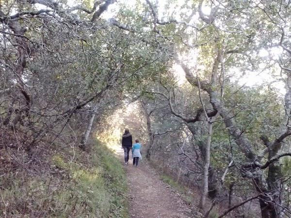 Family Hike 07