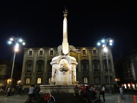 14. Elefantul din Catania by night.JPG