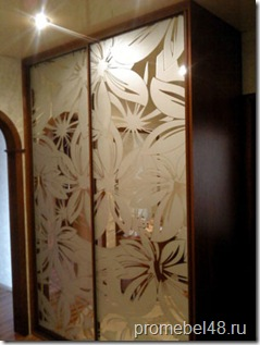 шкаф с пескоструйным рисунком
