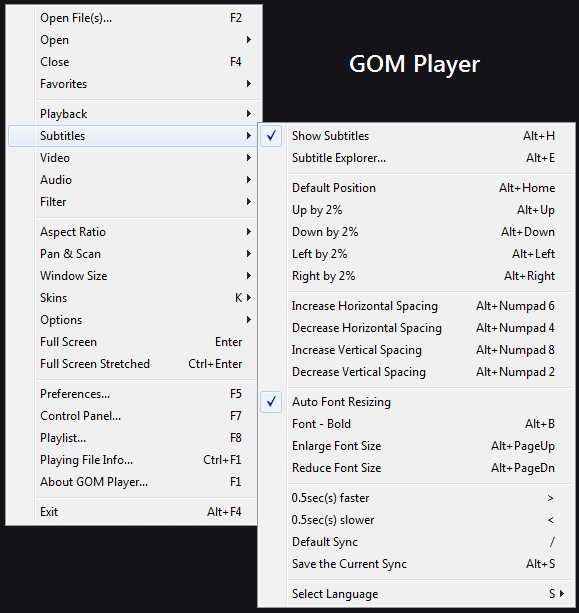 gom-player-settings