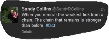 sandy collins chainlink