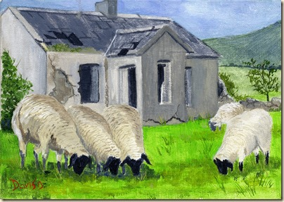 Cottage & Sheep022