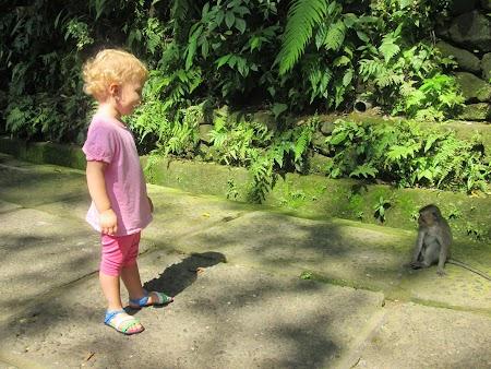 05. Monkey Forest- Bali.JPG