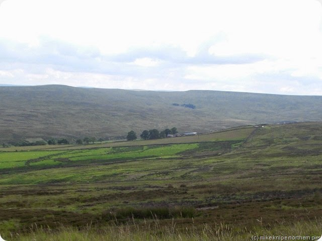 view to crow coal hill