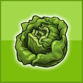 frisches Gemüse vom Bauernhof