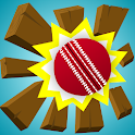Swing and Smash Cricket icon