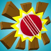 Swing and Smash Cricket