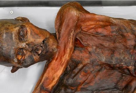 mumia dna nao humano