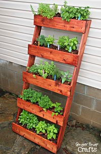 #digin DIY Herb Garden