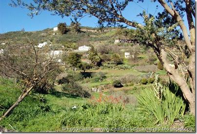4904 Las Lagunetas-Los Arbejales