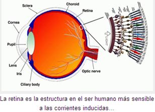 retina 2