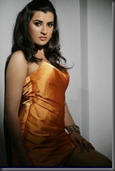 Telugu Actress Archana Hot Photo Shoot Pics
