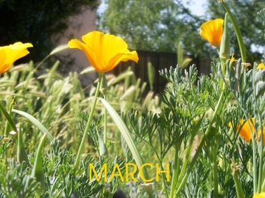 March (2)