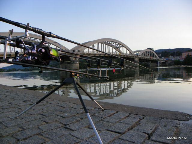Pont de Neuville sur Saône photo #1266