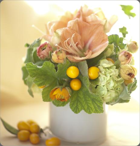 6a0120a5914b9b970c0162ffb1110d970d-800wi florali
