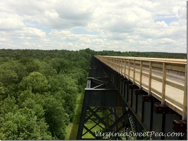 High Bridge in Farmville3
