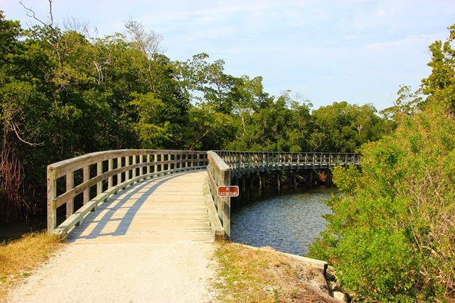Robinson Preserve Boardwalk