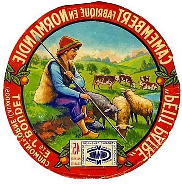 Vintage French Camembert Label Reversed