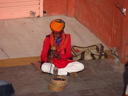 12. Snake charmer in India.JPG
