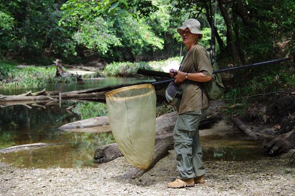 Crique Anguille. Bagne des Annamites, 19 novembre 2012. Photo : J.-M. Gayman