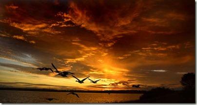 grafham evening sky